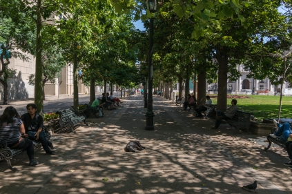 These tree lined strips are scattered through out the city,,,people just sit and watch the world go by under a shady tree.