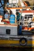 Fisherman hard at work