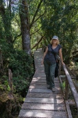 The boardwalk on one of the walks in the Parque Nacional Chiloe